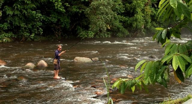 Tenkara fly fishing on small mountain stream