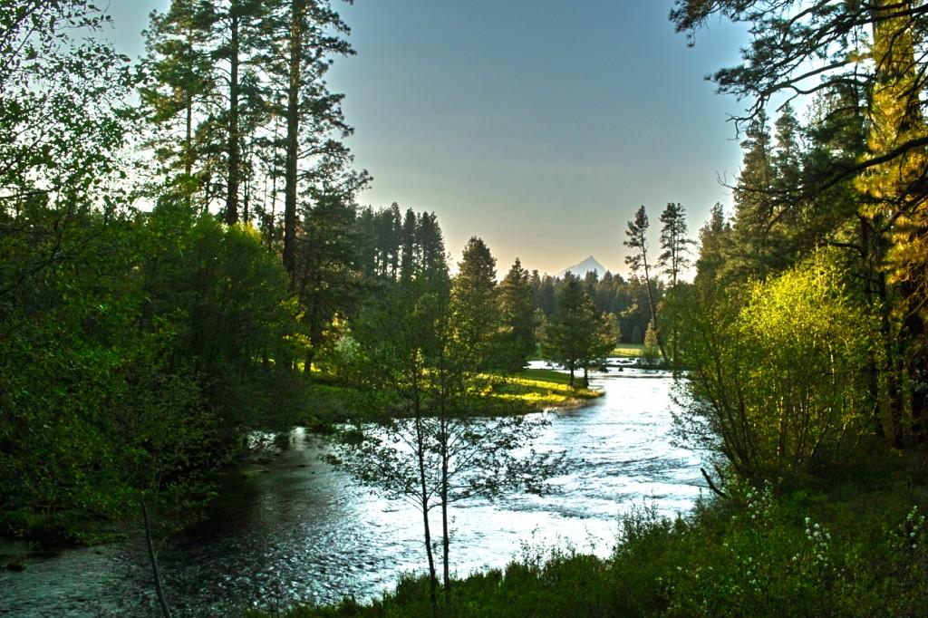 Metolius River tenkara