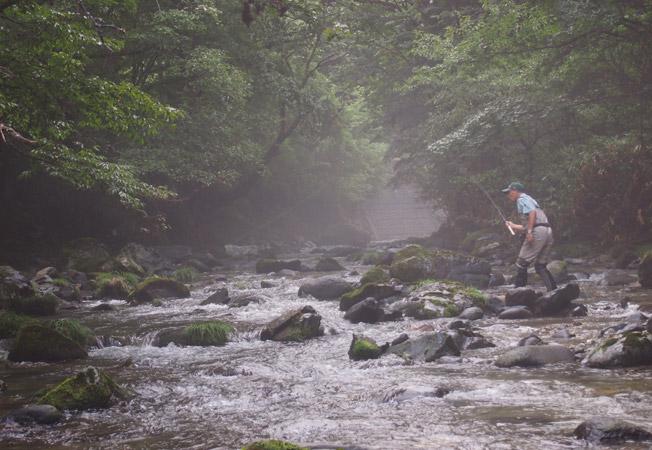 Tenkara fishing a tight stream