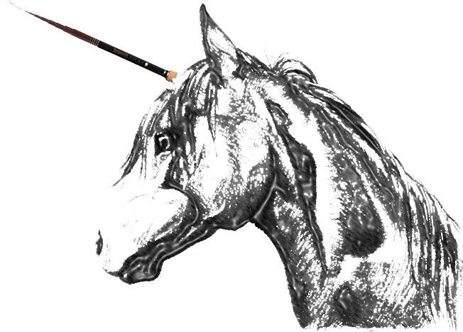 Tenkara Unicorn of Fly fishing