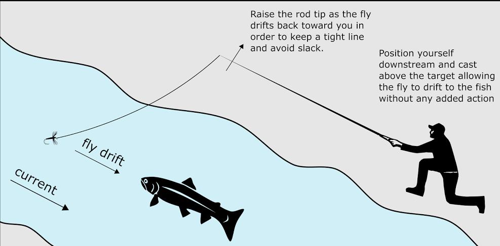 Technique for tenkara 1 - simple fly fishing