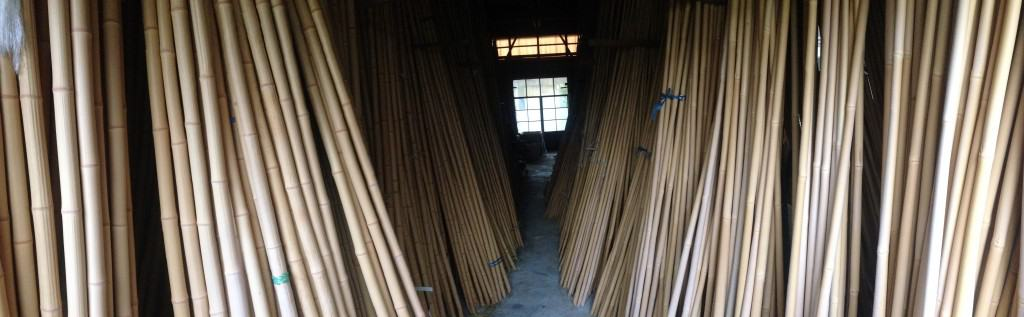 Bamboo for making tenkara rods