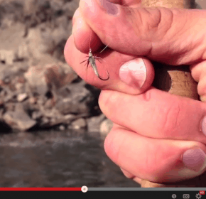 Tenkara fly: one fly philosophy