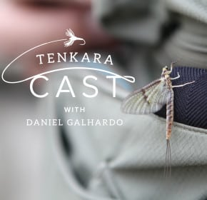 tenkara and entomology