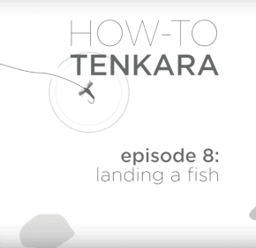 Video: How to land fish with tenkara