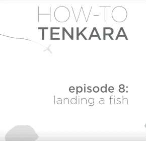 Video: How to Land a Fish with Tenkara