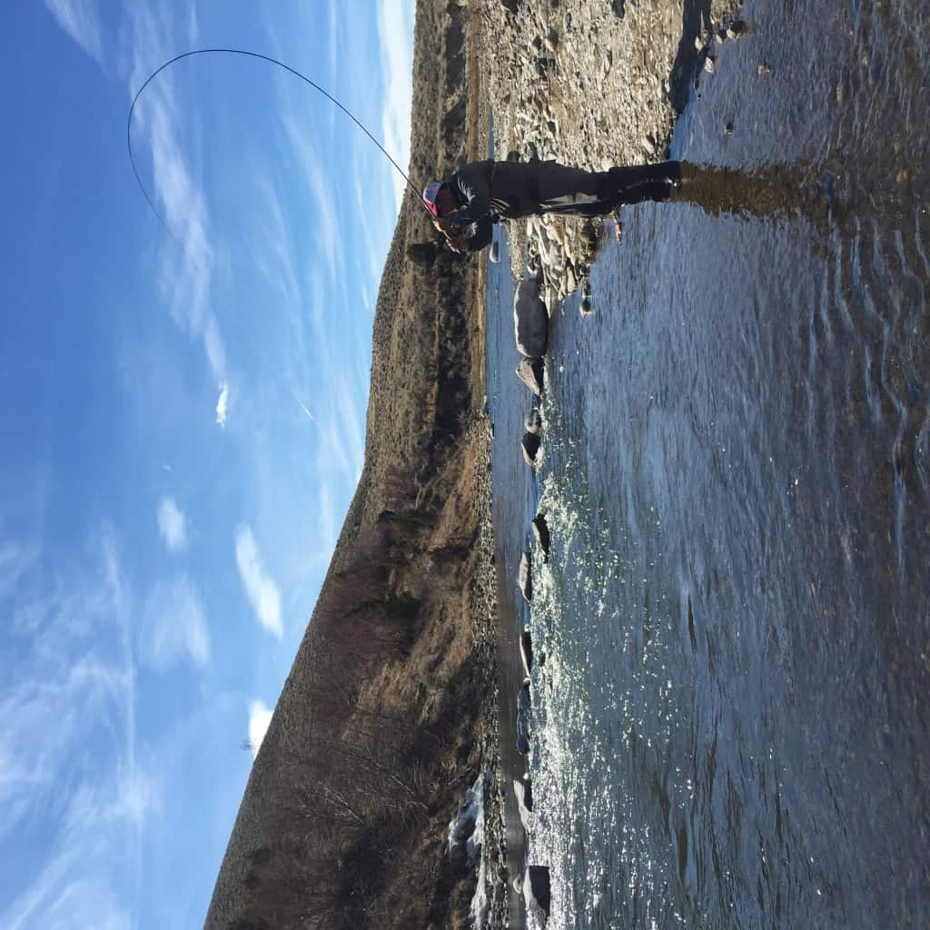 tenkara fishing a large river in Wyoming